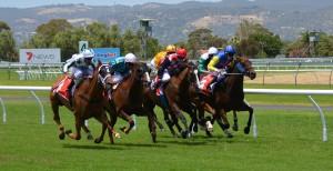 """""""Virtuelle Pferderennen"""": Derby-Sonntage im Grand Casino Baden"""
